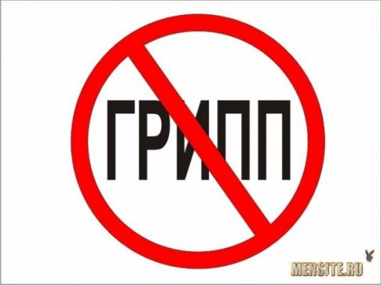 В Беларуси пока циркулируют негриппозные вирусы, грипп ожидают в декабре
